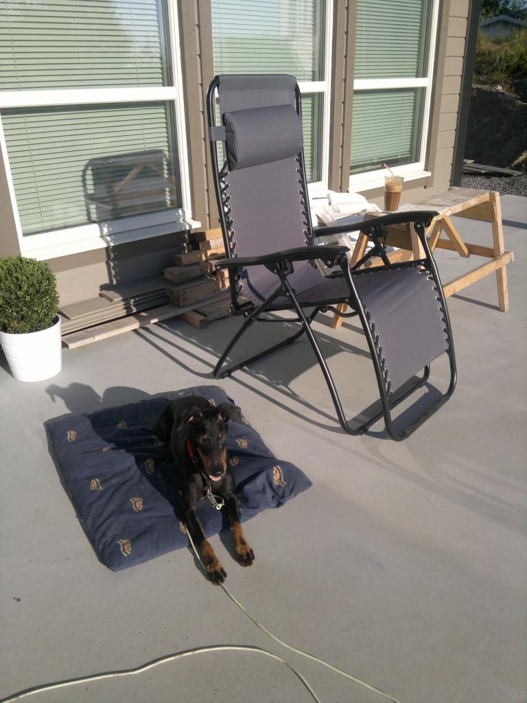 Deilig sensommerkveld og ny Baden-Baden stol ;-)