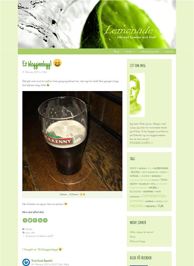 webdesign blogg